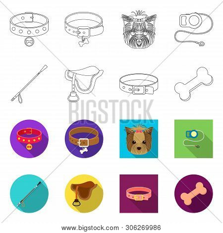 Isolated Object Of Pet And Accessories Sign. Set Of Pet And Shop Vector Icon For Stock.
