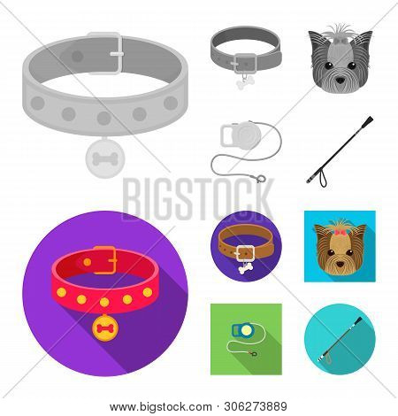 Vector Design Of Pet And Accessories Symbol. Set Of Pet And Shop Vector Icon For Stock.