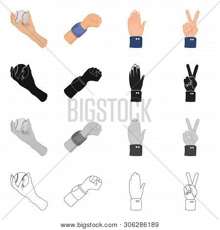Isolated Object Of Animated And Thumb Symbol. Collection Of Animated And Gesture Vector Icon For Sto
