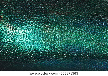 Fish Or Reptile Scale Dark Moody Background. Trendy Animal Pattern. Abstract Texture For Your Projec