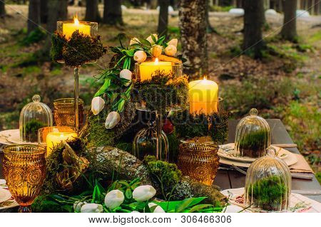 Wedding Table Decorations With Tulips And Moss, In The Forest