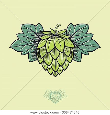Green Hop Cone. Hop Cone Logo. Beer Cone Hop And Leaves Illustration. Engraving Style. Monochrome Op