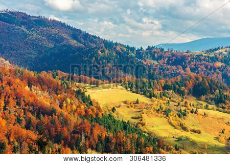 Bright Autumn Scenery In Mountains. Forest On Hills In Colorful Foliage. Sunny Evening With Cloudy S