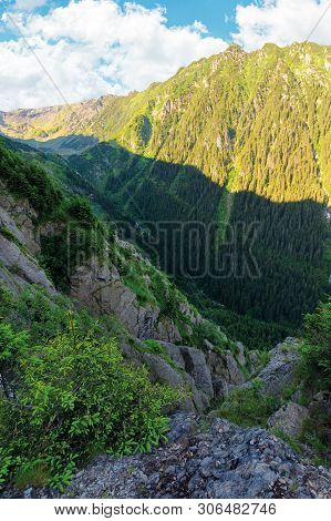 Valley Of The Balea Stream In Fagaras Mountains. View From The Rocky Cliff On A Steep Slope. Foreste