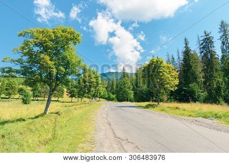Old Country Road In To The Mountains. Nature Scenery With Trees Along The Way. Sunny Summer Landscap