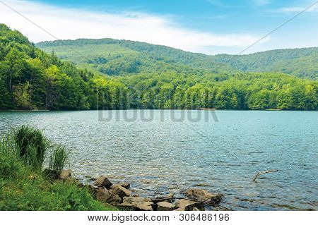 Vihorlat Lake Slovakia. Body Of Water Among Beech Forest In Mountains. Popular Destination In Easter