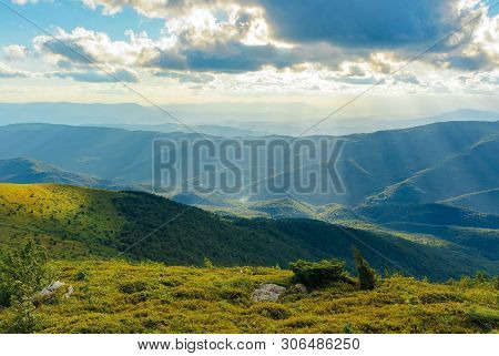 Grassy Meadow Of A Hillside On Top Of Mountain Ridge. Beautiful Summer Landscape With Blue Sky And A