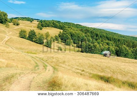Country Road Winding Uphill Through Meadow. Weathered Grass On Pastures. Primeval Beech Forest On Th