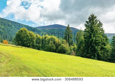 Countryside Landscape With Forest On Hills.  Beautiful Scenery Of Carpathian Mountains In Early Autu