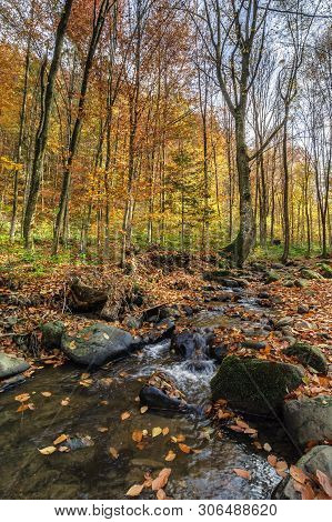 Refreshing Stream In The Autumn Forest. Beautiful Nature Scenery. Rocks Among The Brook With Shore C