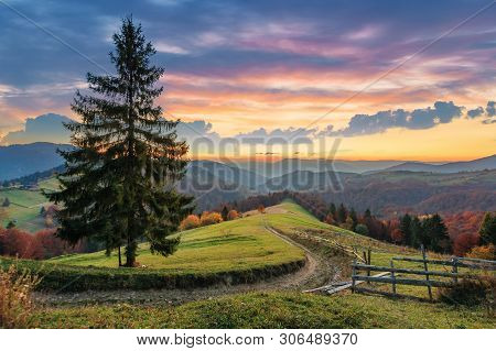 Autumn Countryside In Mountain At Dusk. Dirt Road Down The Hill In To The Distant Forest. Spruce Tre