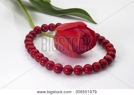 Bright Red Beads And A Red Tulip With Green Leaves.