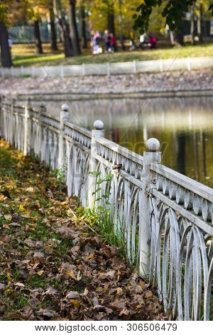 Autumn Park, Trees Reflected In The Pond, White Rusty Fence, Withered Leaves