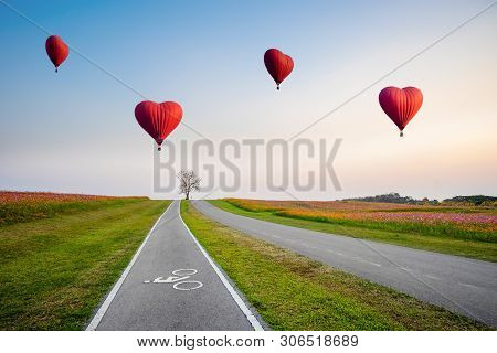 Red Hot Air Balloons In The Shape Of A Heart Over Cosmos Flower Field On Sunset