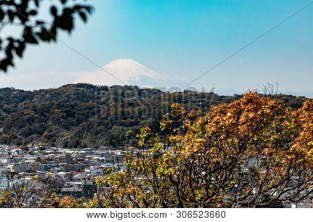 Panorama Of Kamakura City. Japanese Landscape. View Of Mount Fuji. View From The Park To Kamakura