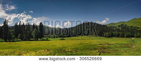Alpine Meadows Of Avadhara Abkhazia Georgia Travel Nature Mountains Summer Vacation