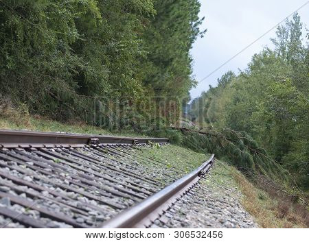 Trees Have Come Down After Hurricane Florence Across A Railroad Track Near Fayetteville North Caroli