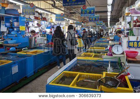 Busan, South Korea - April 2019: Fresh Seafood Sold At Millak Raw Fish Market Located Near Gwangalli