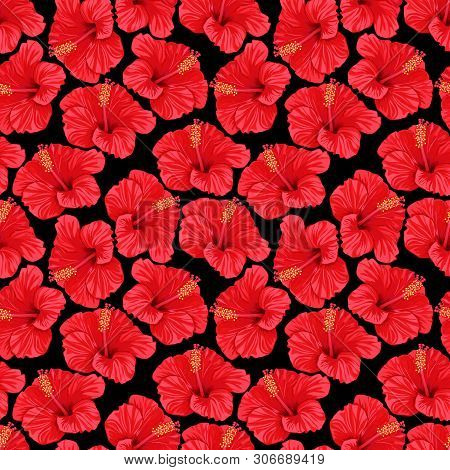 Tropical Summer Flowers Bright Background. Seamless Pattern Of Red Hibiscus Flowers. Vector Illustra