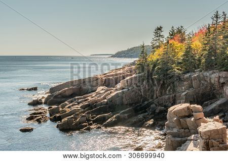 Autumn Colors On Rocky Maine Coast In Acadia