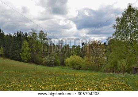 Viefw Of Spring Landscape, Southern Bohemia . Czech Republic