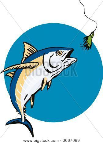 Tuna Catching The Bait