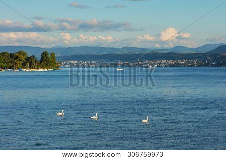 Lake Zurich At Sunset In Summer, Summits Of The Alps In The Background, View From The City Of Zurich
