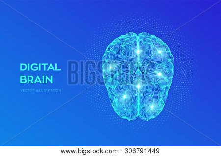 Brain. Digital Brain With Binary Code. 3d Science And Technology Concept. Neural Network. Iq Testing