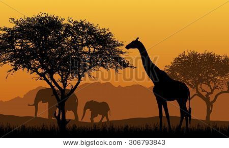 Realistic Illustration Of African Safari With Mountain Landscape, Trees And Elephant And Giraffe. Un