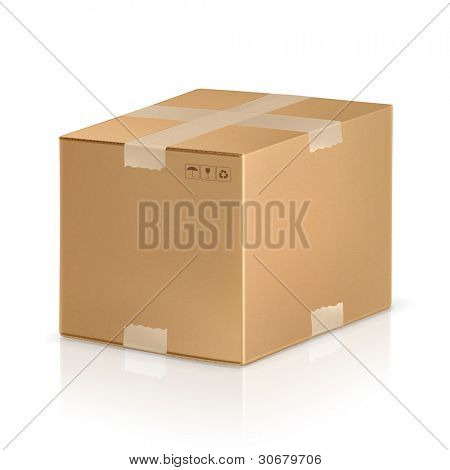 Carton box, vector