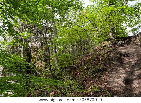 Ruins Of Sulov Castle In Forest At Slovakia