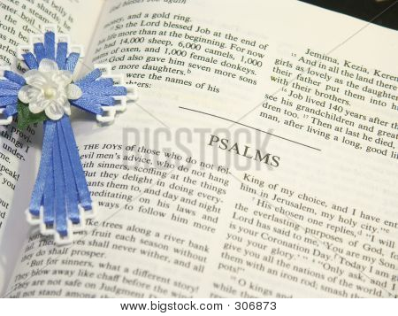 Psalms Bible Pages
