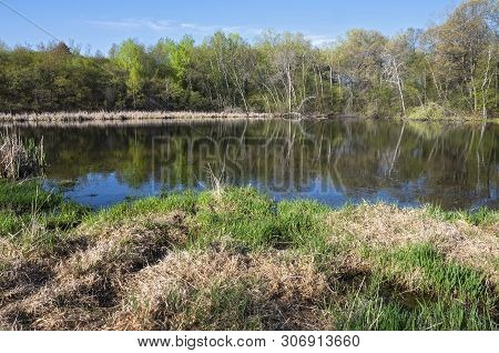 Pond And Woodlands On Opposite Bank With Trees Reflected In Water At Salem Hills Park In Inver Grove