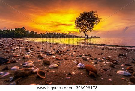Silhouettes Of Avicennia Officinalis Trees And Amazing Cloudy Sky On Sunrise At Tropical Beach In Th