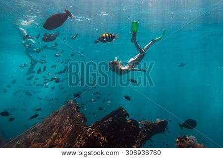 Young woman snorkeling and skin dives in the tropical sea over the shipwreck. USAT Liberty shipwreck in Bali, Indonesia