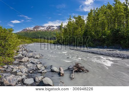 Along Exit Glacier Trail In Kenai Fjords National Park In Alaska, United States