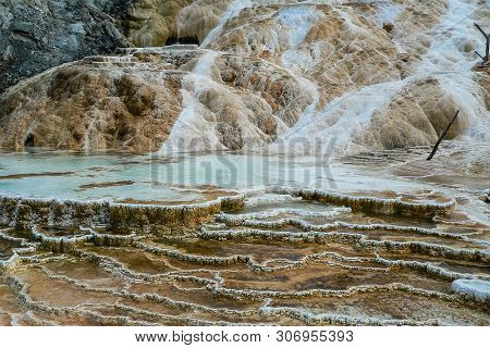 Palette Springs In Yellowstone National Park In Wyoming, United States