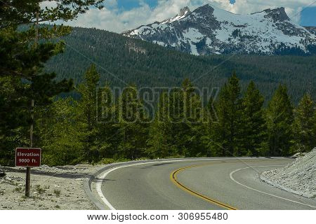Tioga Road Views In Yosemite National Park In California, United States