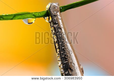Holding arm with water bubbles close up shot