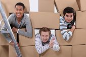 trio of male flatmates moving in poster