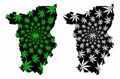Perm Krai (Russia, Subjects of the Russian Federation, Krais of Russia) map is designed cannabis leaf green and black, Perm Krai map made of marijuana (marihuana,THC) foliage, poster