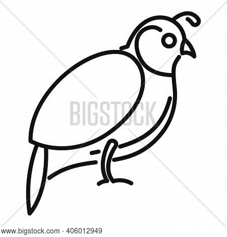 Quail Icon. Outline Quail Vector Icon For Web Design Isolated On White Background