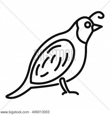 Quail Chicken Icon. Outline Quail Chicken Vector Icon For Web Design Isolated On White Background