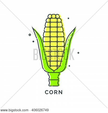 Golden Corn On White Background. Organic Food. Healthful Product. Young Yellow Ear Of Maize With Gre