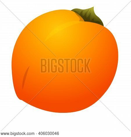 Persimmon Fresh Fruit Icon. Cartoon Of Persimmon Fresh Fruit Vector Icon For Web Design Isolated On