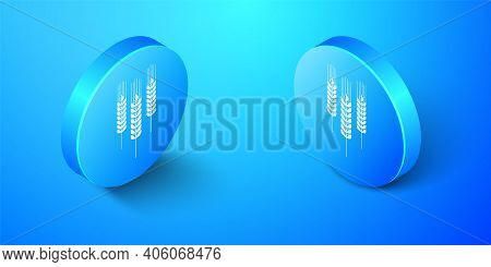 Isometric Cereals Icon With Rice, Wheat, Corn, Oats, Rye, Barley Icon Isolated On Blue Background. E