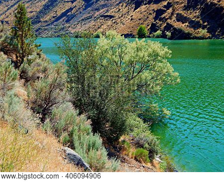 Hot Day By The Emerald Waters - A Warm Summer Scene Along Lake Billy Chinook In The Cove Palisades S