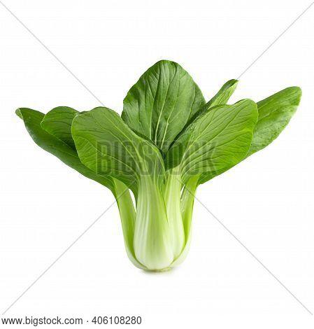 Fresh Green Chinese Cabbage, Bok Choy, Pok Choi Or Pak Choi, Isolated On White Background