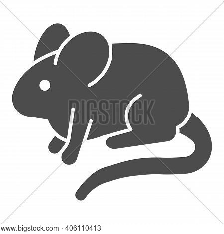 Experimental Laboratory Mouse Solid Icon, Pest Control Concept, Rat Sign On White Background, Mouse