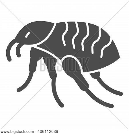 Bloodsucker Solid Icon, Pest Control Concept, Louse Sign On White Background, Insect Parasites Icon
